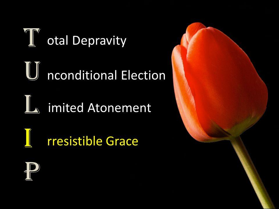 TULIPTULIP otal Depravity nconditional Election imited Atonement rresistible Grace