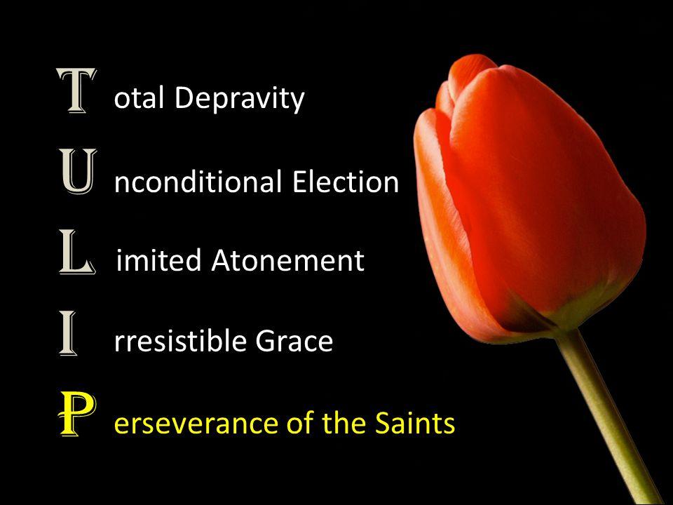 TULIPTULIP otal Depravity nconditional Election imited Atonement rresistible Grace erseverance of the Saints