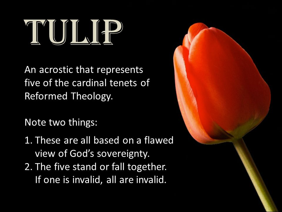 TULIP An acrostic that represents five of the cardinal tenets of Reformed Theology. Note two things: 1.These are all based on a flawed view of God's s
