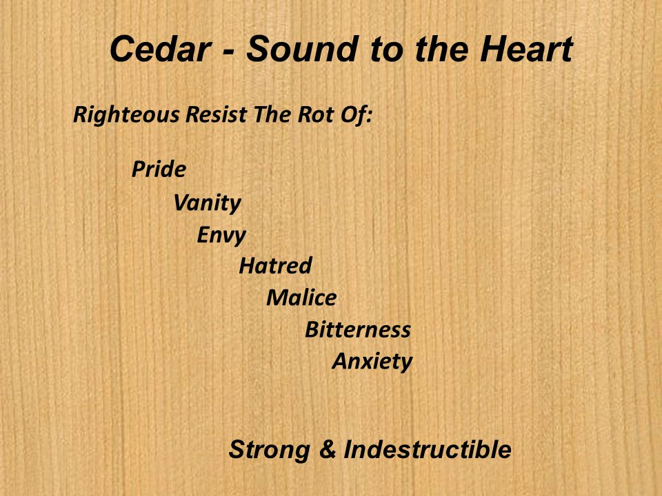Cedar - Sound to the Heart Strong & Indestructible Righteous Resist The Rot Of: Pride Vanity Envy Hatred Malice Bitterness Anxiety