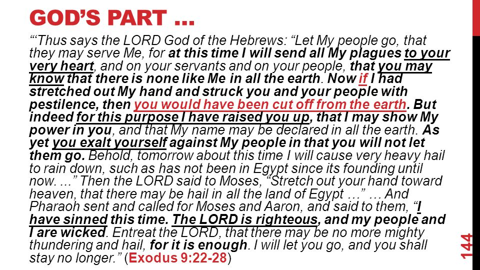 GOD'S PART … 'Thus says the LORD God of the Hebrews: Let My people go, that they may serve Me, for at this time I will send all My plagues to your very heart, and on your servants and on your people, that you may know that there is none like Me in all the earth.