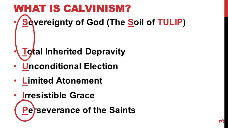 WHAT IS CALVINISM.