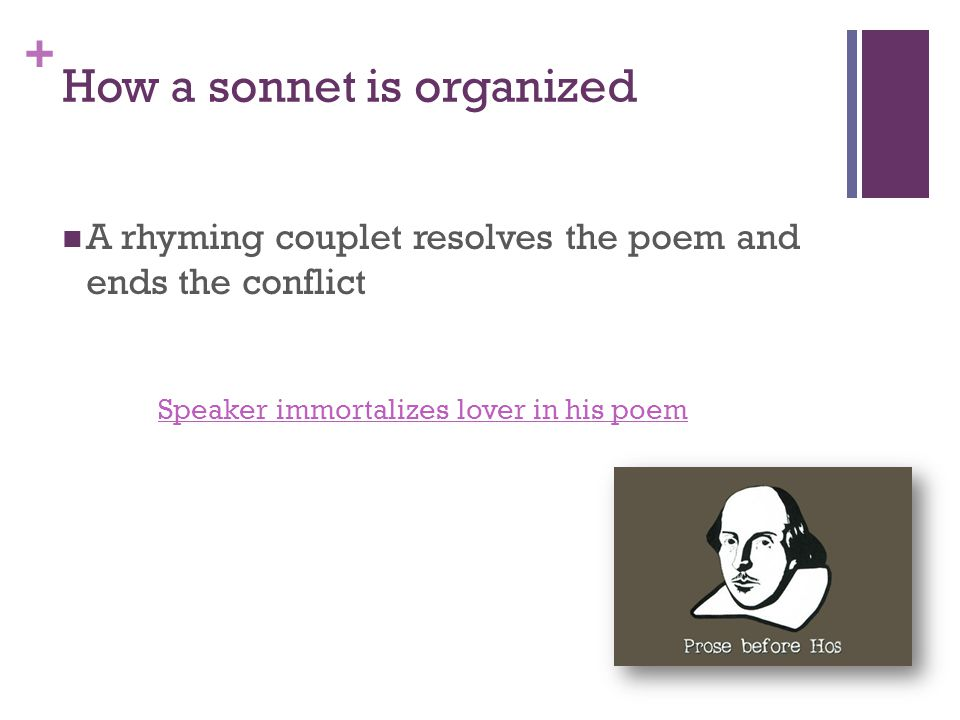 + How a sonnet is organized A rhyming couplet resolves the poem and ends the conflict Speaker immortalizes lover in his poem