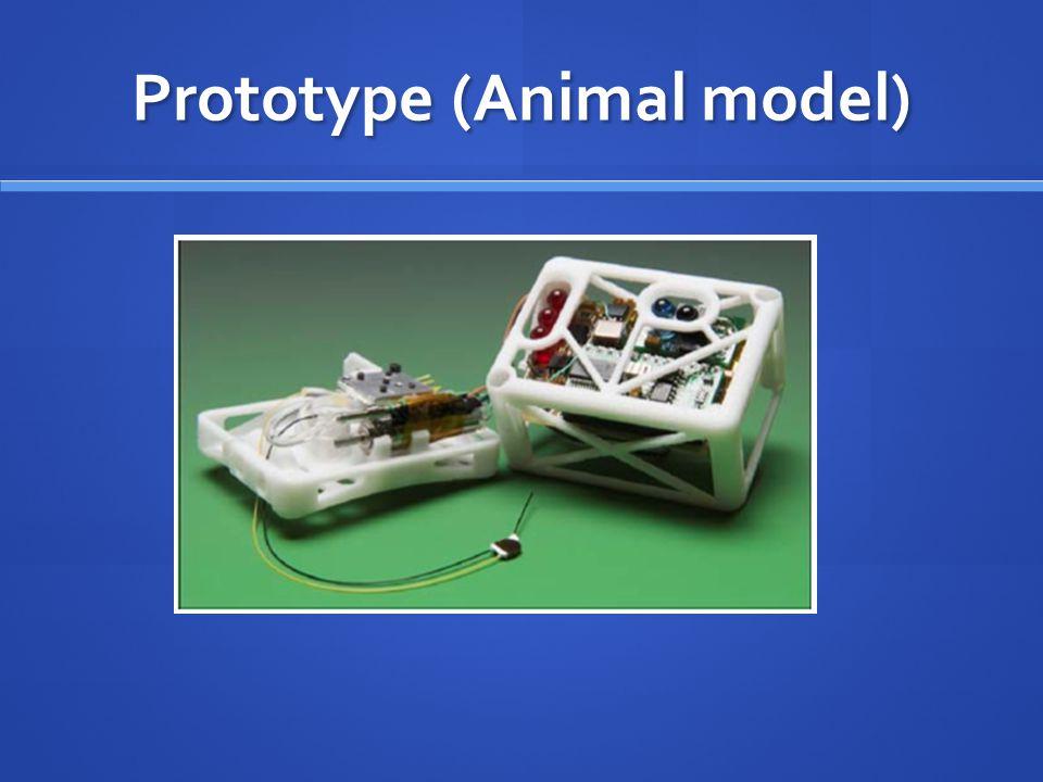 Prototype (Animal model)