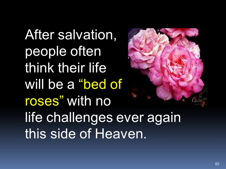 """82 After salvation, people often think their life will be a """"bed of roses"""" with no life challenges ever again this side of Heaven."""