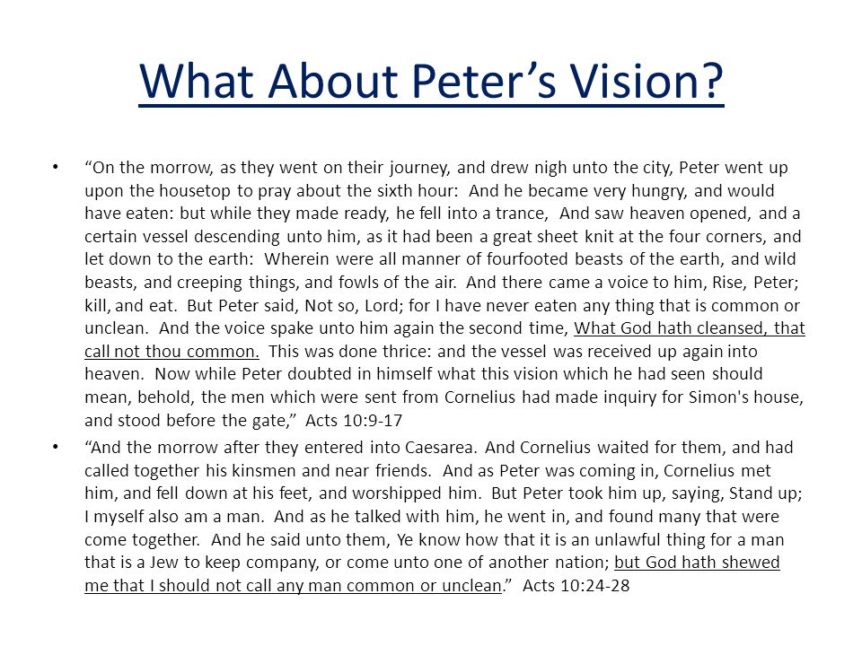 What About Peter's Vision.