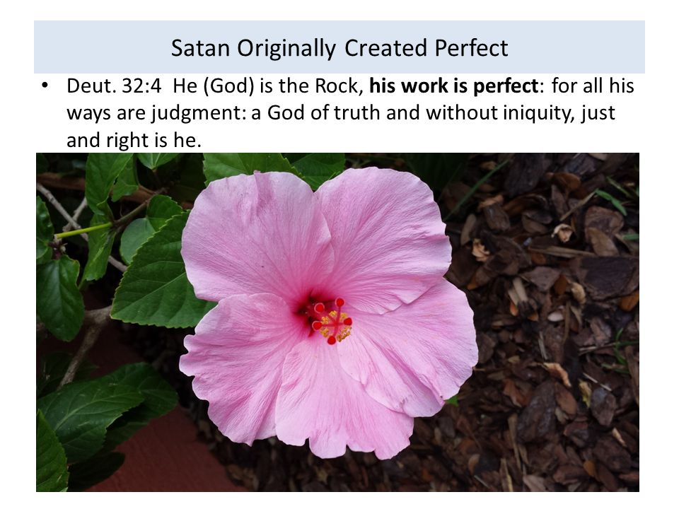 Satan Originally Created Perfect Deut. 32:4 He (God) is the Rock, his work is perfect: for all his ways are judgment: a God of truth and without iniqu