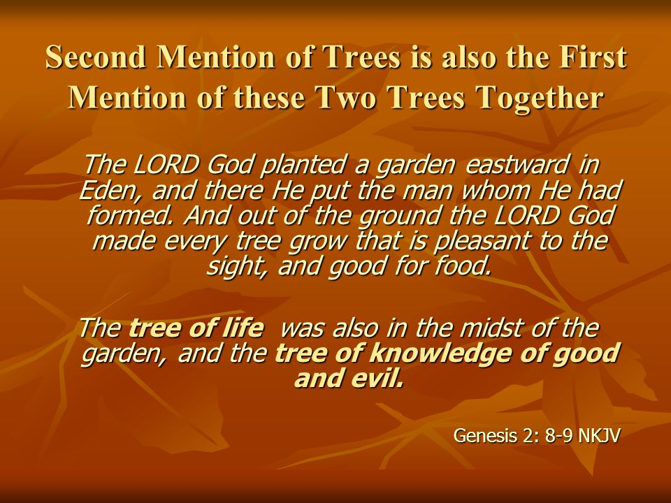 The LORD God planted a garden eastward in Eden, and there He put the man whom He had formed. And out of the ground the LORD God made every tree grow t