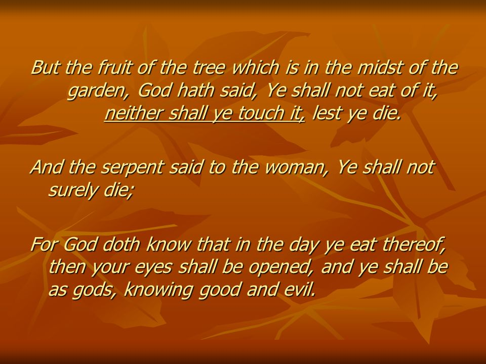 But the fruit of the tree which is in the midst of the garden, God hath said, Ye shall not eat of it, neither shall ye touch it, lest ye die.