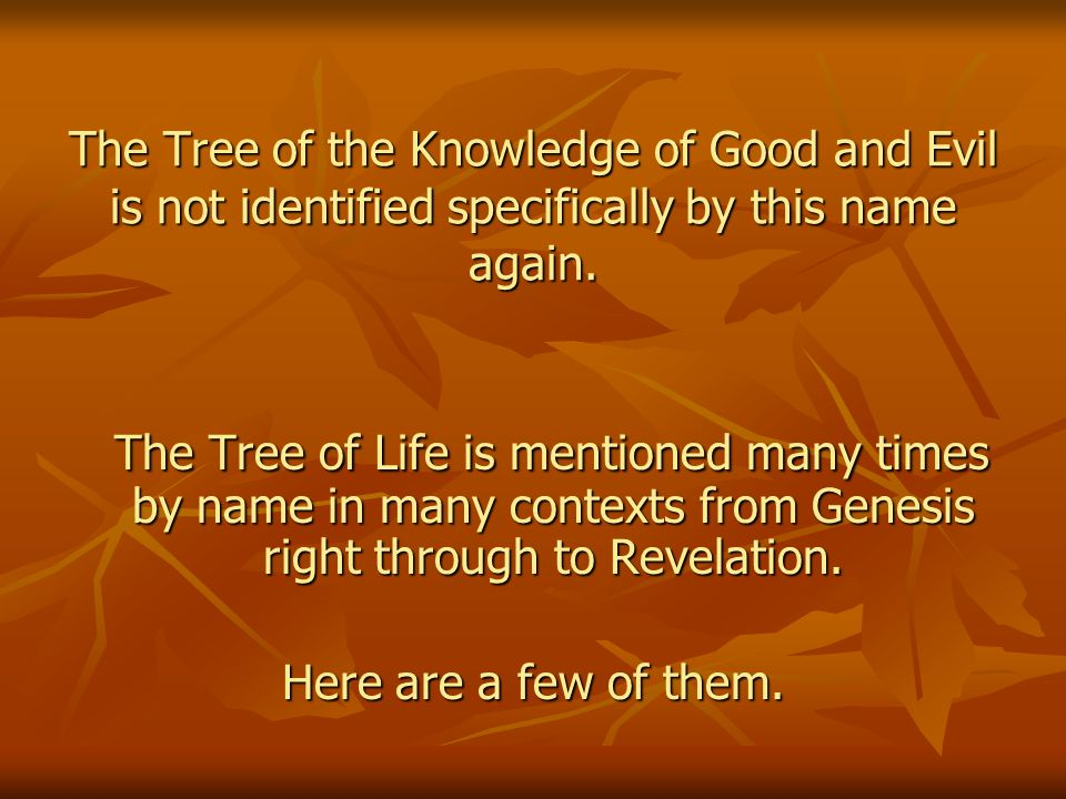 The Tree of the Knowledge of Good and Evil is not identified specifically by this name again.