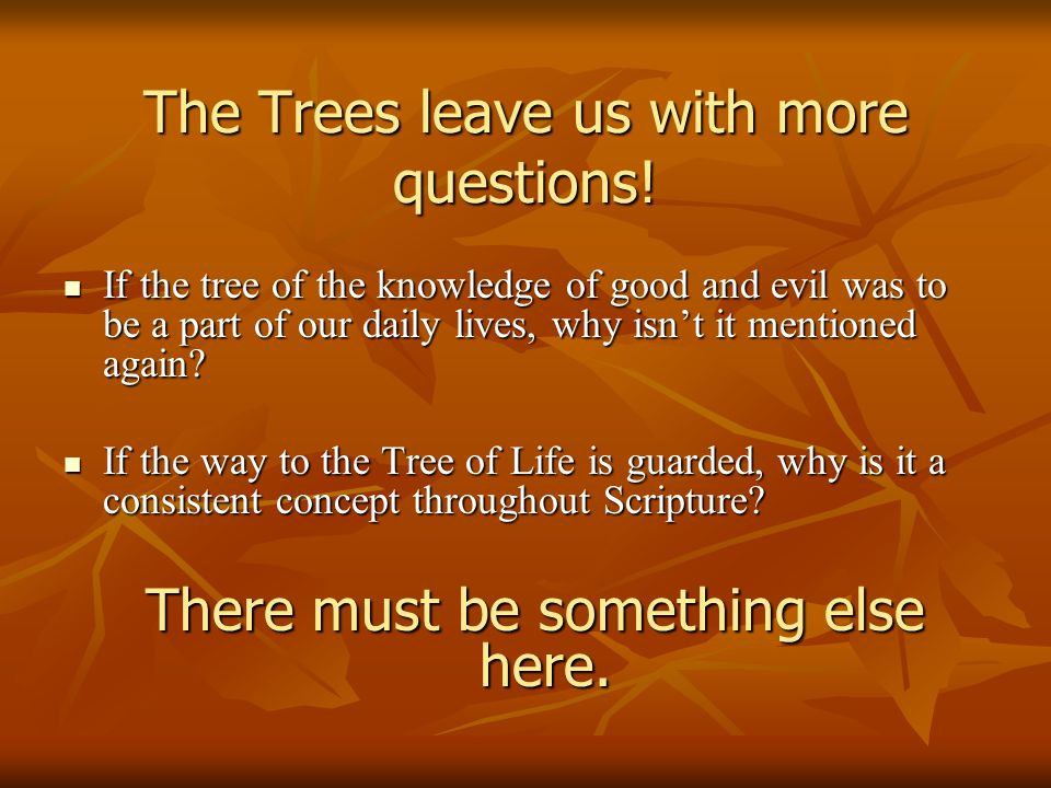 The Trees leave us with more questions! If the tree of the knowledge of good and evil was to be a part of our daily lives, why isn't it mentioned agai
