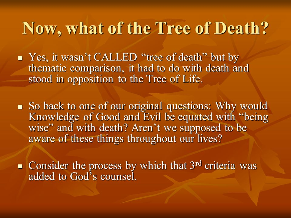 "Now, what of the Tree of Death? Yes, it wasn't CALLED ""tree of death"" but by thematic comparison, it had to do with death and stood in opposition to t"