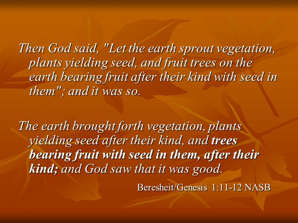 Then God said, Let the earth sprout vegetation, plants yielding seed, and fruit trees on the earth bearing fruit after their kind with seed in them ; and it was so.