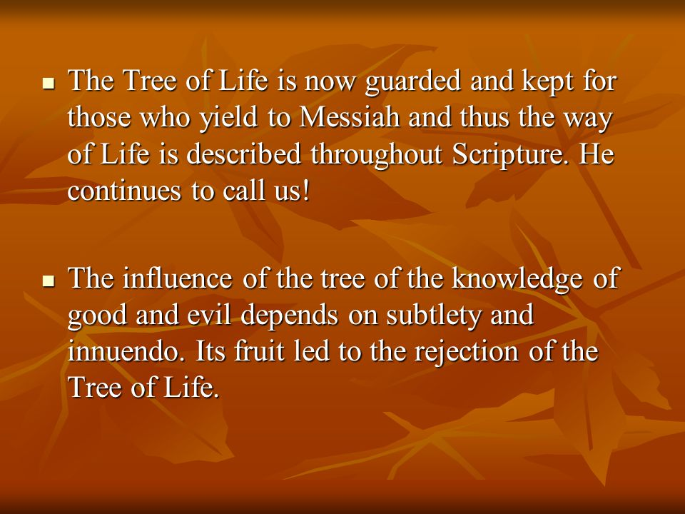 The Tree of Life is now guarded and kept for those who yield to Messiah and thus the way of Life is described throughout Scripture. He continues to ca