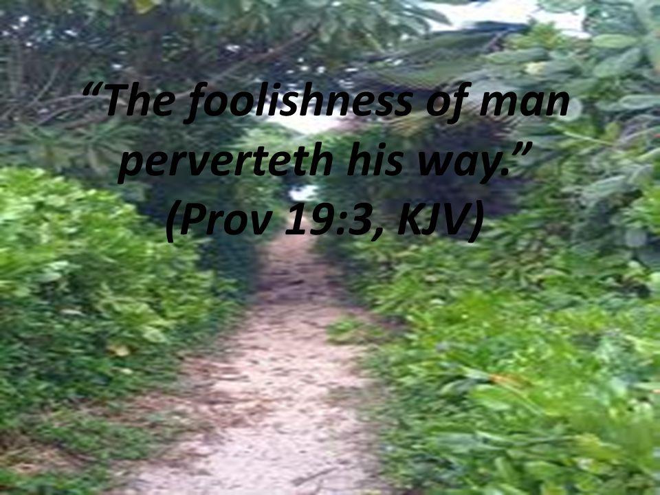 The foolishness of man perverteth his way. (Prov 19:3, KJV)