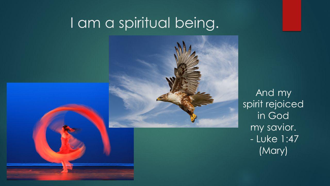 I am a spiritual being. And my spirit rejoiced in God my savior. - Luke 1:47 (Mary)