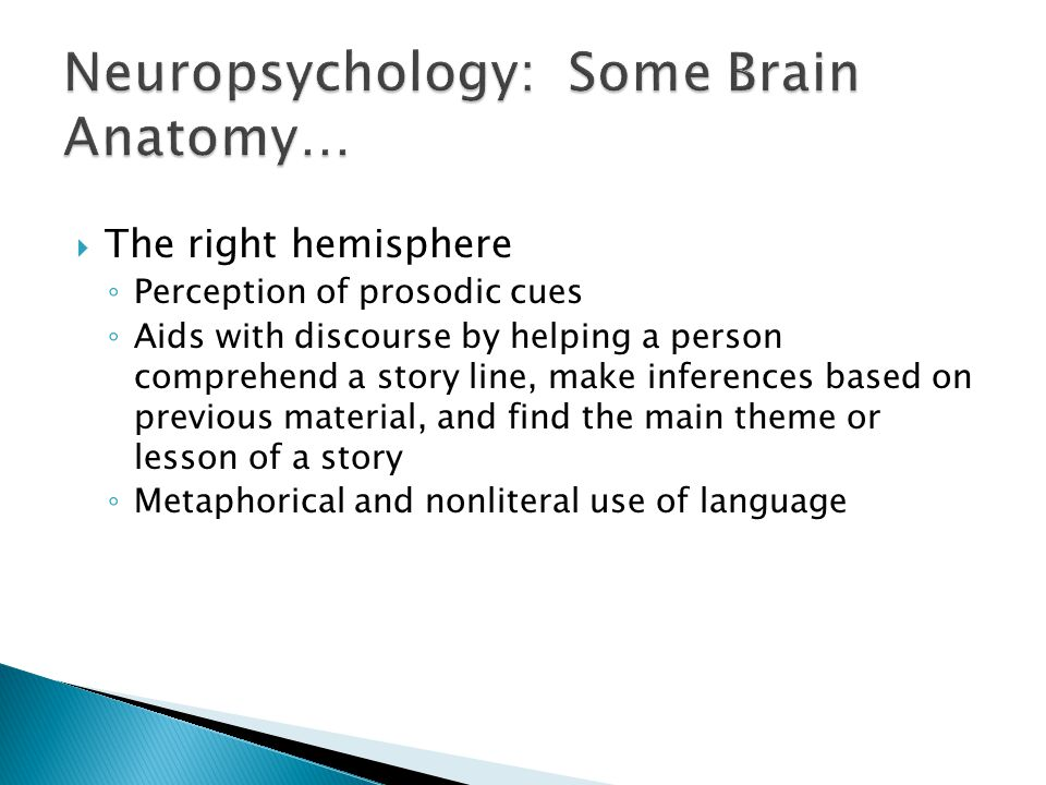  The right hemisphere ◦ Perception of prosodic cues ◦ Aids with discourse by helping a person comprehend a story line, make inferences based on previous material, and find the main theme or lesson of a story ◦ Metaphorical and nonliteral use of language