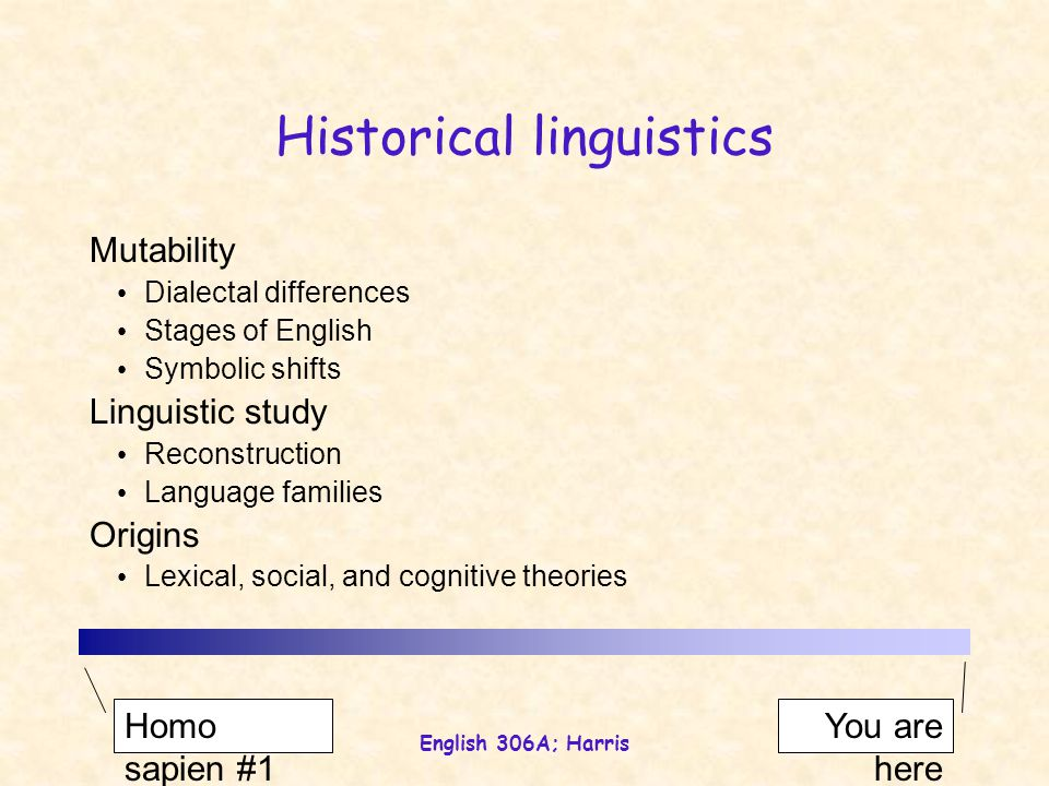 English 306A; Harris Historical linguistics Mutability Dialectal differences Stages of English Symbolic shifts Linguistic study Reconstruction Language families Origins Lexical, social, and cognitive theories Homo sapien #1 You are here