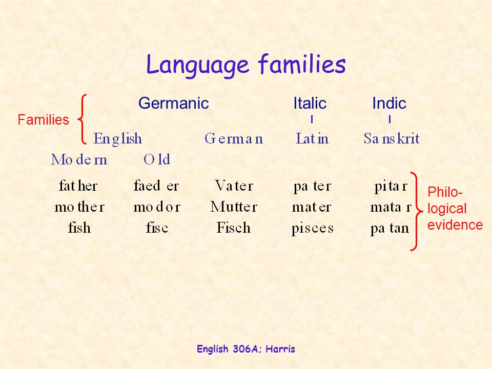 English 306A; Harris Proto-Germanic Philology, reconstruction, and language families Grimm's Law hypothetical, reconstructed language Proto-IndicProto