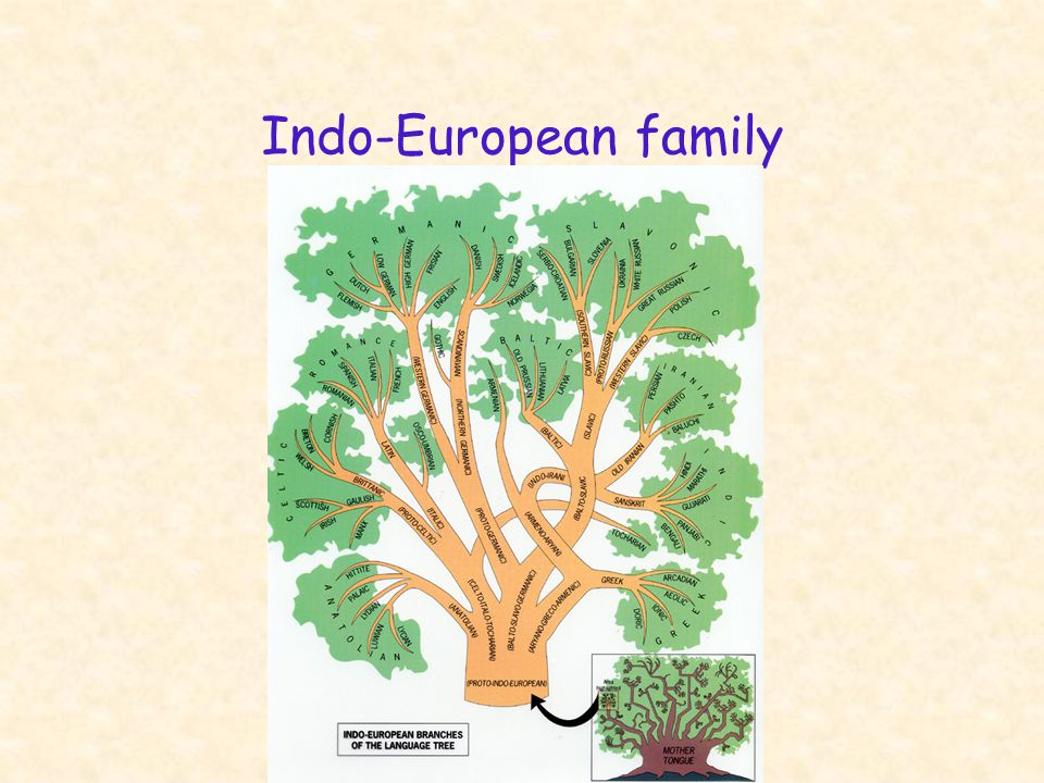 English 306A; Harris Indo-European GermanicIndicItalic Families Philo- logical evidence