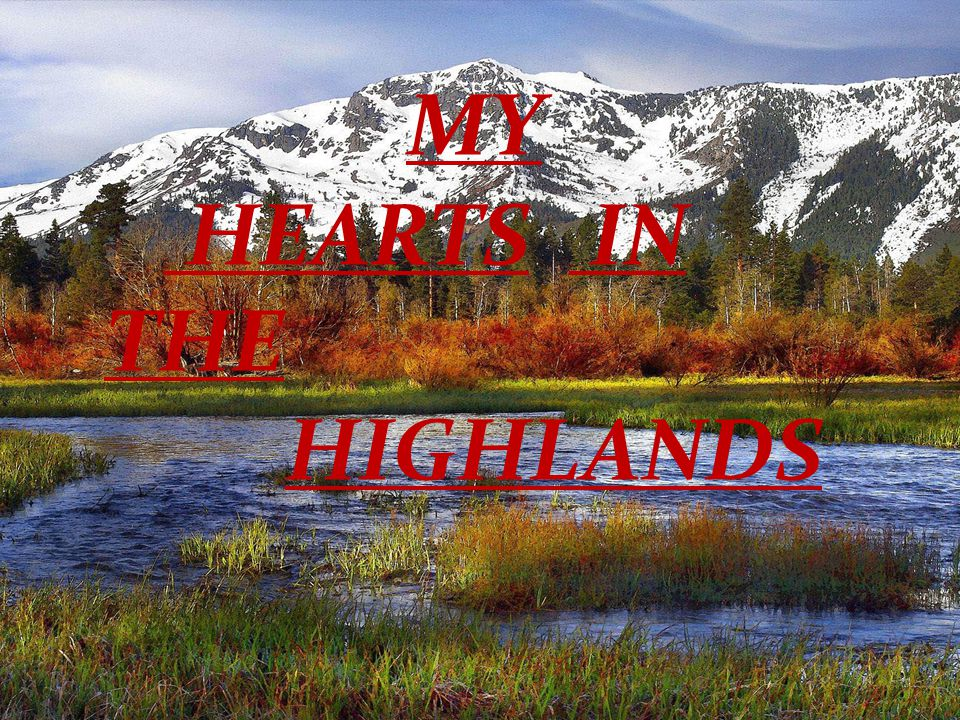 MY HEARTS IN THE HIGHLANDS