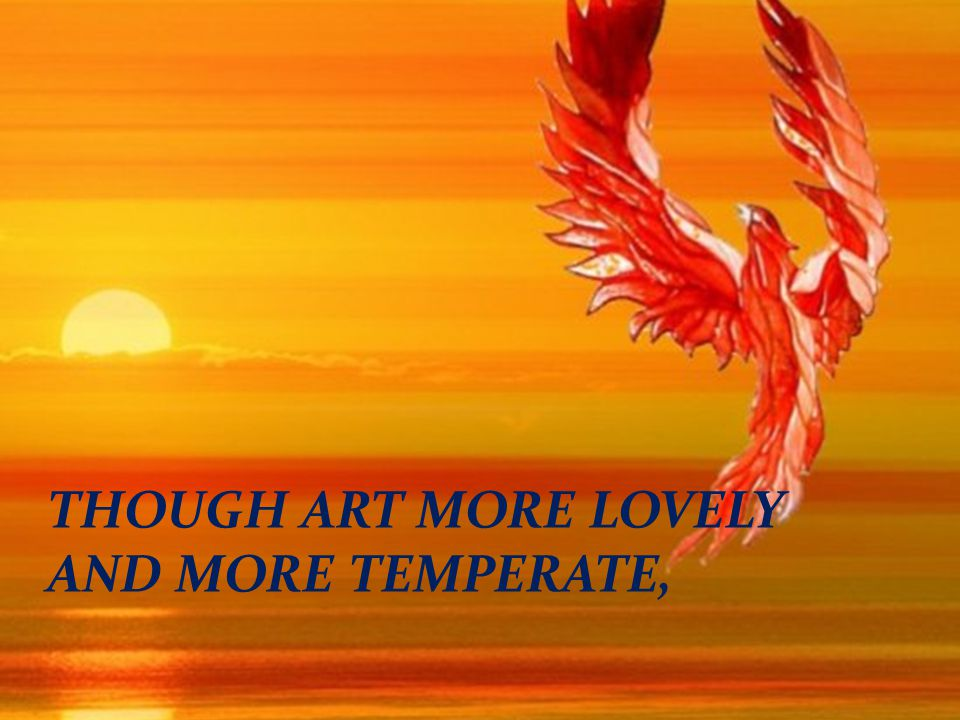 THOUGH ART MORE LOVELY AND MORE TEMPERATE,