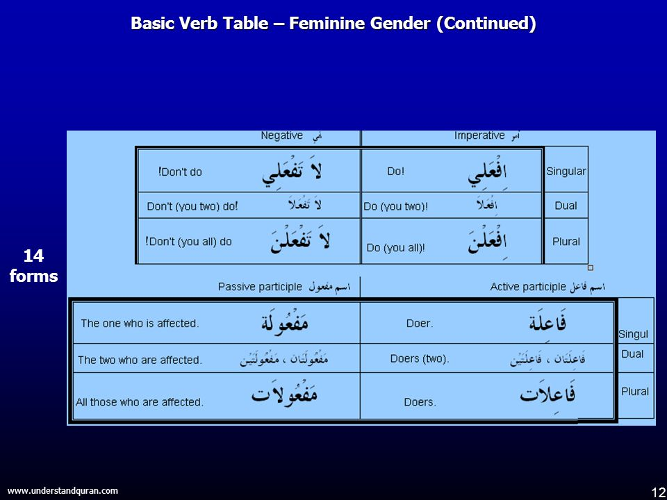 12 www.understandquran.com Basic Verb Table – Feminine Gender (Continued) 14 forms