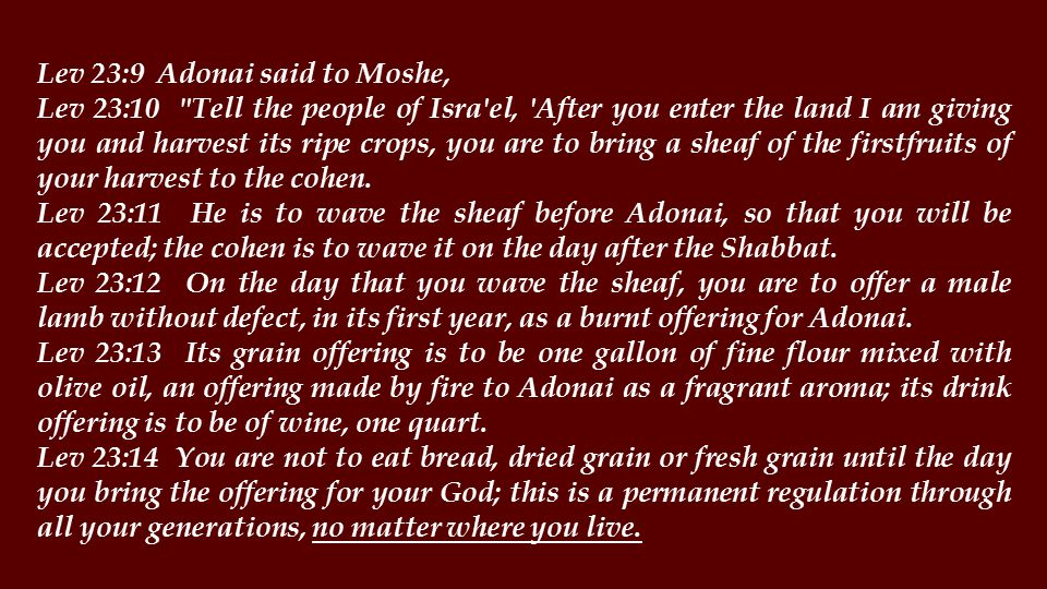 Lev 23:9 Adonai said to Moshe, Lev 23:10 Tell the people of Isra el, After you enter the land I am giving you and harvest its ripe crops, you are to bring a sheaf of the firstfruits of your harvest to the cohen.
