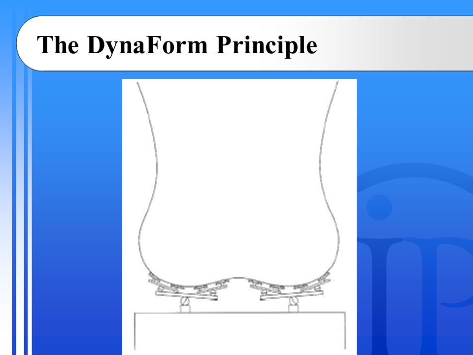 The DynaForm Principle