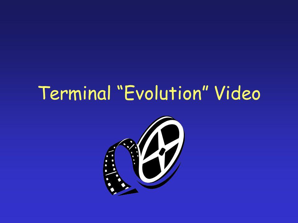 Terminal Evolution Video