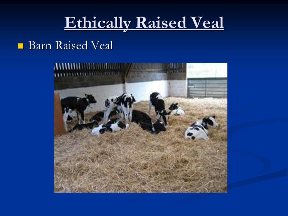 Ethically Raised Veal Barn Raised Veal Barn Raised Veal