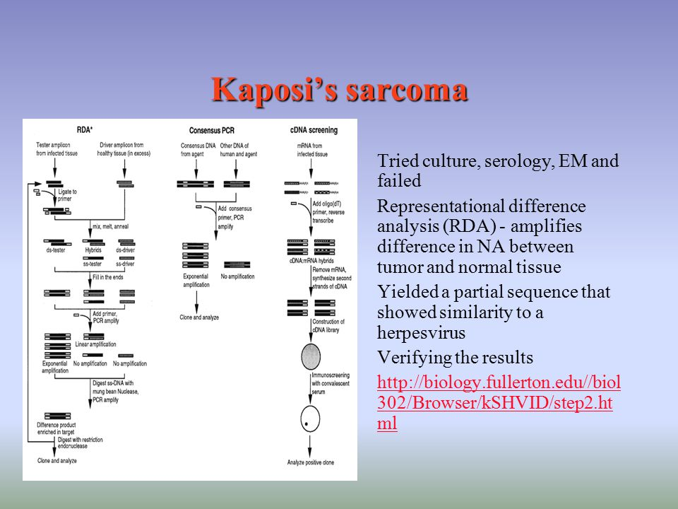 Kaposi's sarcoma Tried culture, serology, EM and failed Representational difference analysis (RDA) - amplifies difference in NA between tumor and norm