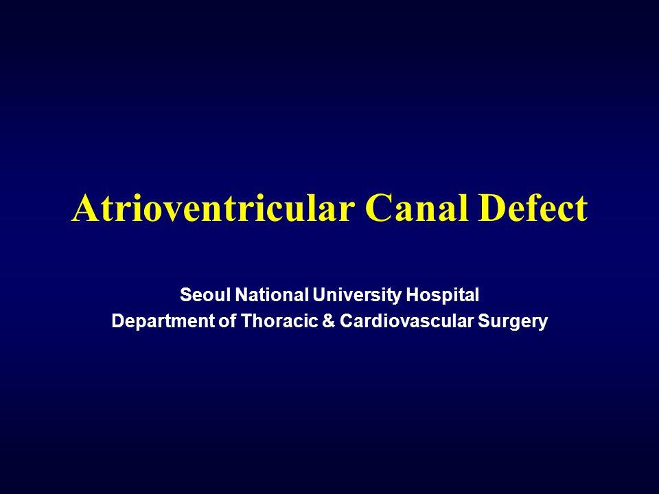 Atrioventricular Canal Defect Seoul National University Hospital Department of Thoracic & Cardiovascular Surgery