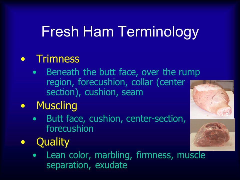 Fresh Ham Terminology Trimness Beneath the butt face, over the rump region, forecushion, collar (center section), cushion, seam Muscling Butt face, cu
