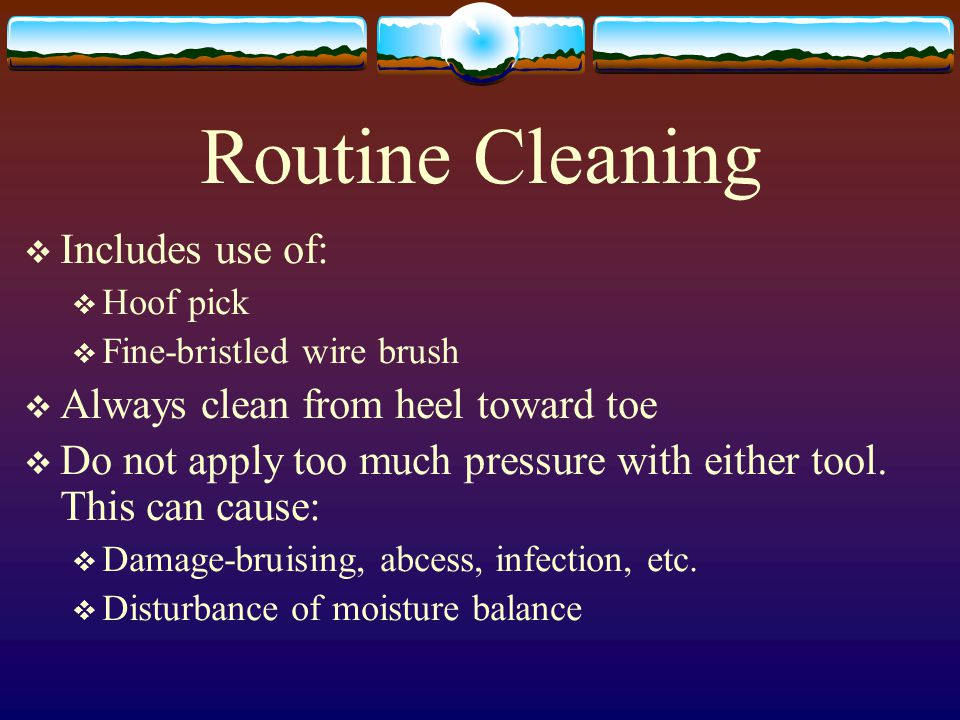 Routine Cleaning  Includes use of:  Hoof pick  Fine-bristled wire brush  Always clean from heel toward toe  Do not apply too much pressure with e