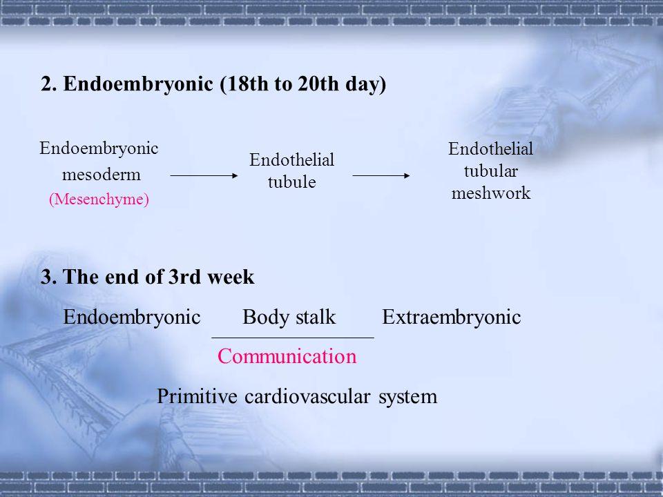 Compartmentation of primitive atrium ( 4th to 5th week)  Septum primum: end of 4th week Foramen primum : Foramen secundum: Foramen ovale: Valve of foramen ovale:  Septum secundum: end of 5th week
