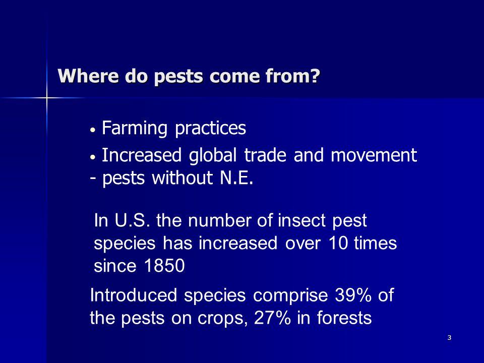 4 Pesticides – Panacea or problem.