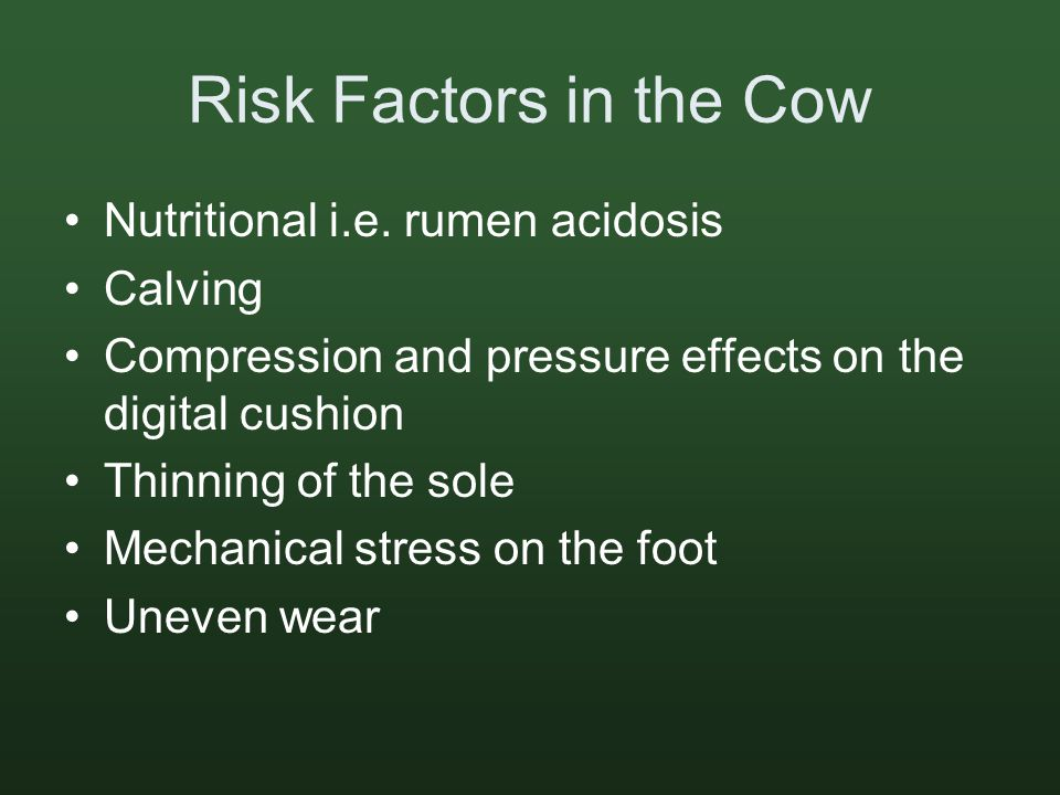 Risk Factors in the Cow Nutritional i.e.