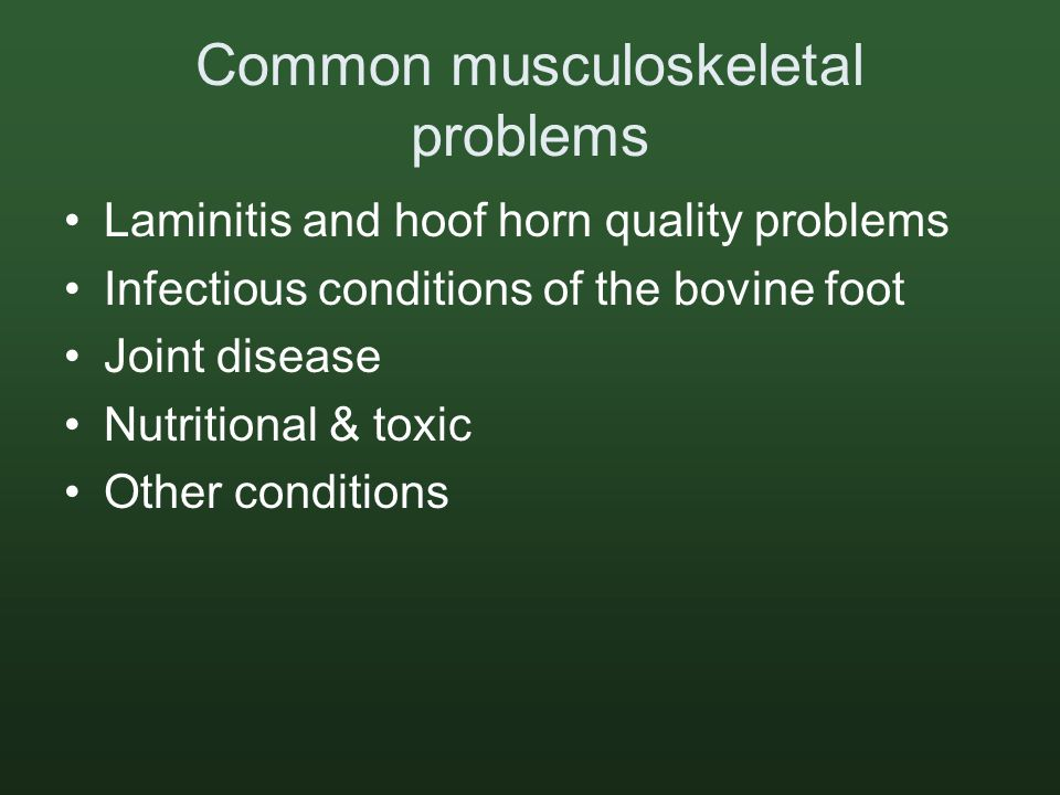 Common musculoskeletal problems Laminitis and hoof horn quality problems Infectious conditions of the bovine foot Joint disease Nutritional & toxic Other conditions