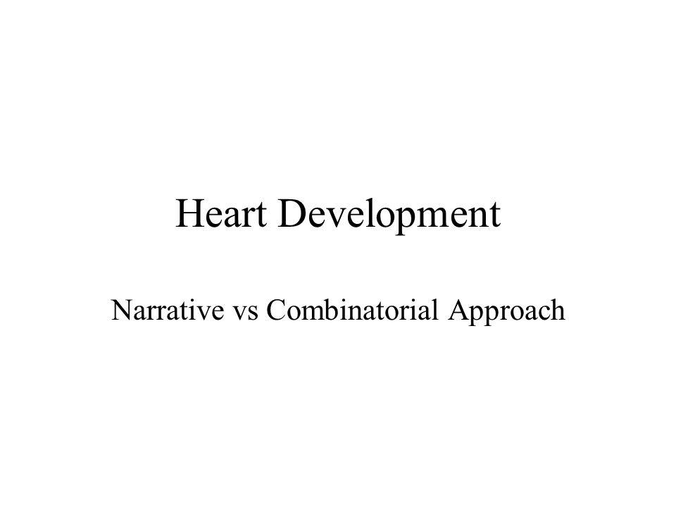 Heart Development Narrative vs Combinatorial Approach