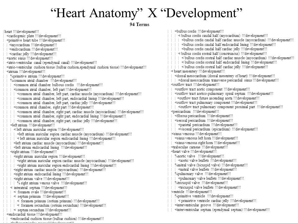 Heart Anatomy X Development | heart !!!development!!.