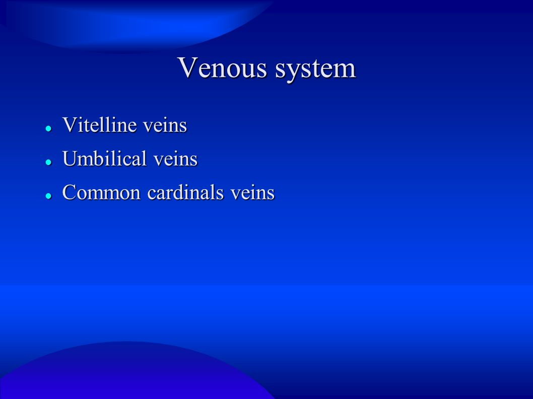 Vitelline veins Vitelline veins form plexus surrounding duodenum – pass septum transversum - sinusoids in liver Vitelline veins form plexus surrounding duodenum – pass septum transversum - sinusoids in liver Reduction of left sinus horn – blood flow enter right side of heart – right hepatocardiac channel – hepatocardiac portion of the inferior vena cava Reduction of left sinus horn – blood flow enter right side of heart – right hepatocardiac channel – hepatocardiac portion of the inferior vena cava Network around duodenum – portal vein Network around duodenum – portal vein Left vitelline vein except for hepatic part disappears Left vitelline vein except for hepatic part disappears Right vitteline vein – superior mesenteric vein Right vitteline vein – superior mesenteric vein