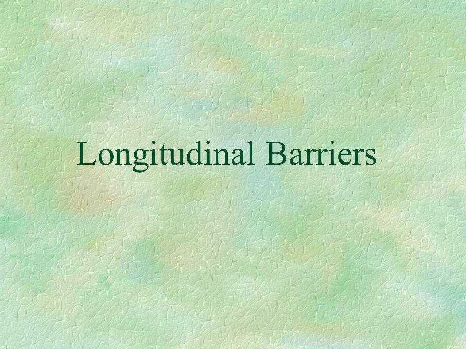 Longitudinal Barriers