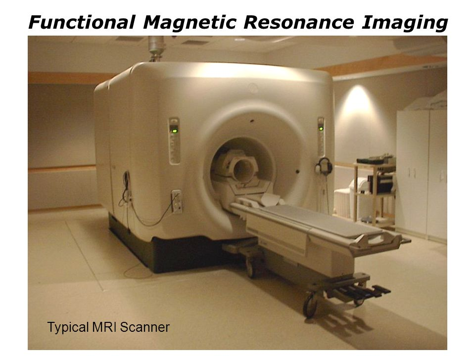 Functional Magnetic Resonance Imaging Typical MRI Scanner