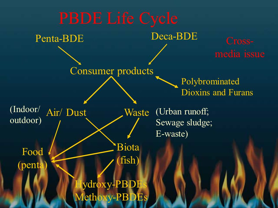 PBDE Life Cycle Penta-BDE Deca-BDE Consumer products Polybrominated Dioxins and Furans Air/ DustWaste Food (penta) (Urban runoff; Sewage sludge; E-was