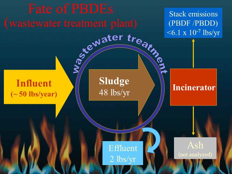 Fate of PBDEs ( wastewater treatment plant) Influent (~ 50 lbs/year) Stack emissions (PBDF /PBDD) <6.1 x 10 -7 lbs/yr Effluent 2 lbs/yr Sludge 48 lbs/yr Incinerator Ash (not analyzed)