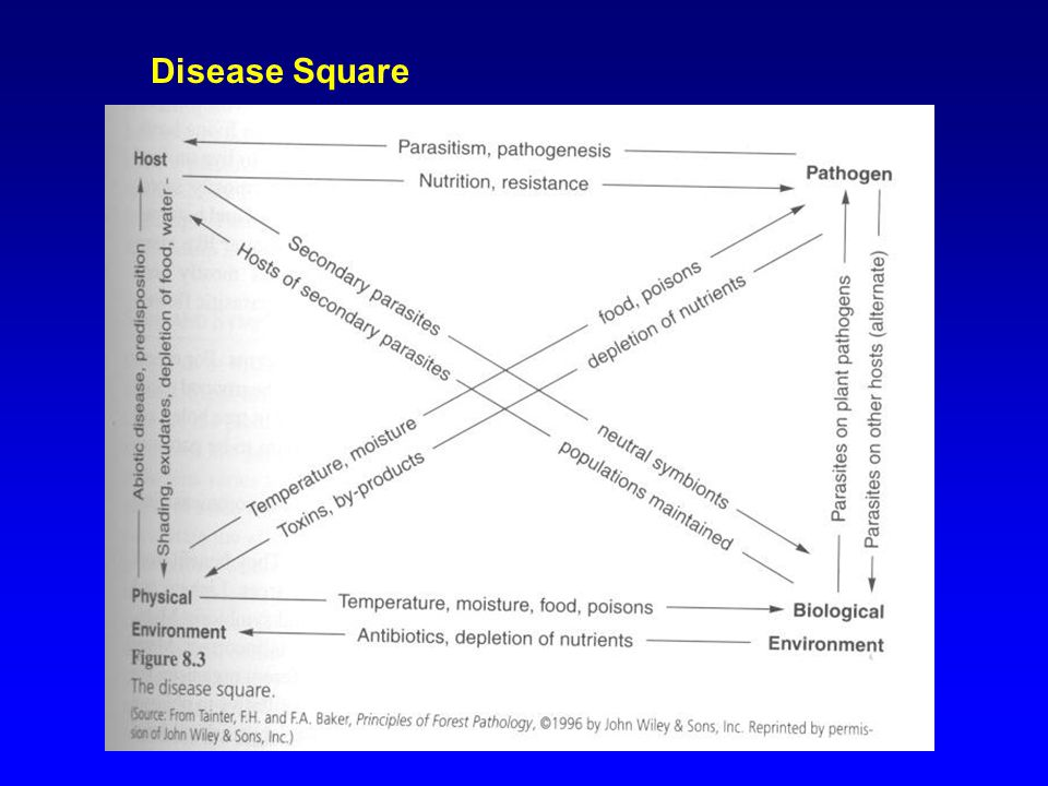 Disease Triangle & Tetrahedron Host Pathogen Environment Time