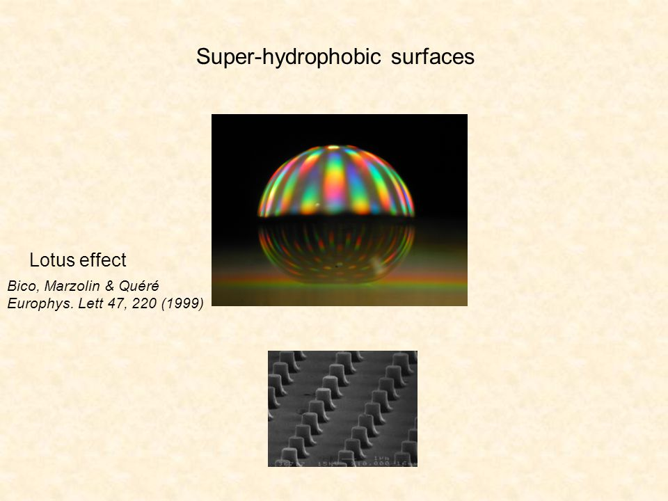 OUTLINE Basics of wetting / Superhydrophobic surfaces Surfing on an air cushion .
