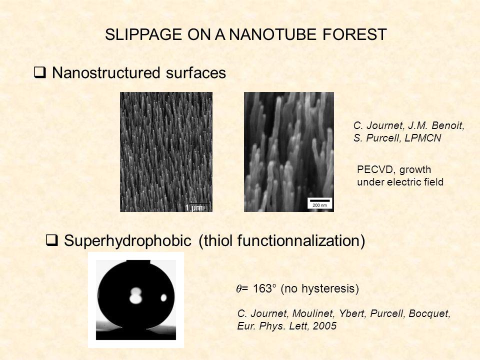 SLIPPAGE ON A NANOTUBE FOREST 1 µm C. Journet, J.M.