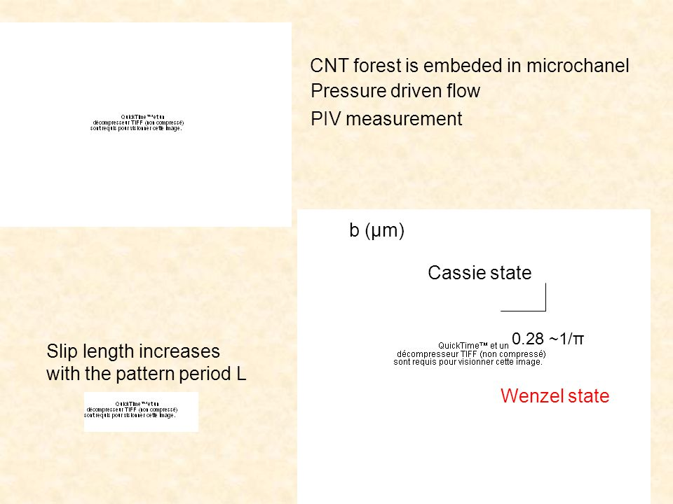 b (µm) 0.28 ~1/π Slip length increases with the pattern period L CNT forest is embeded in microchanel Pressure driven flow PIV measurement Wenzel state Cassie state